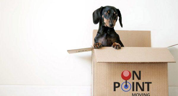 moving company san diego